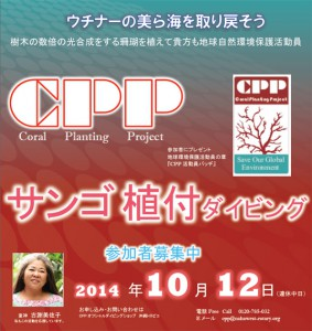 cpp_img6